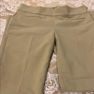 Ann Taylor women pants with zipper on side.